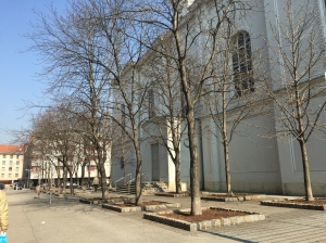 "Projekt ""Baumpatenschaft am Migazziplatz"""